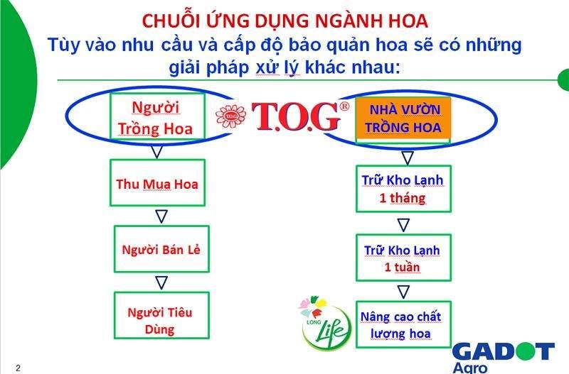 quy-trinh-xu-ly-tog-la-gi-86517