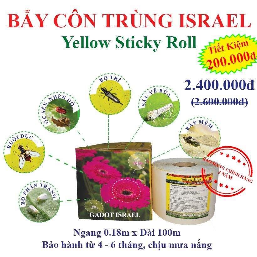 bay-ruoi-duc-bang-keo-bay-con-trung-vang-israel 19