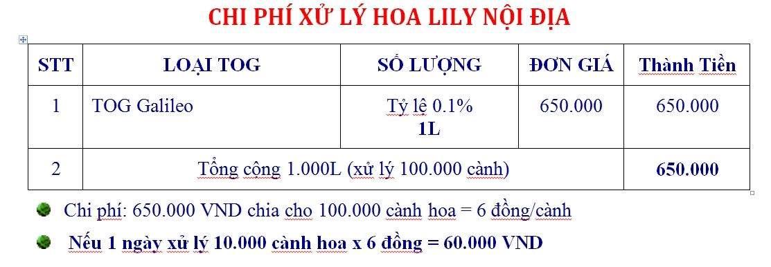chi-phi-xu-ly-h0a-lily-noi-dia