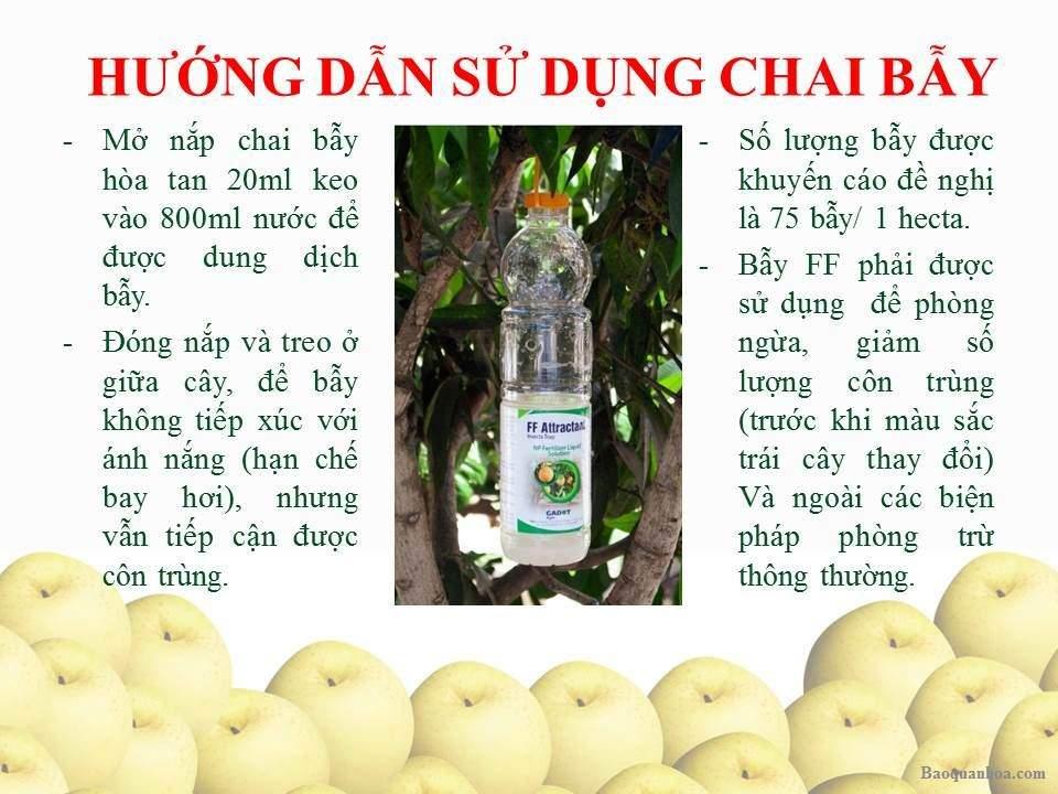 khang-ngoc-khanh-bay-con-trung-chai 2