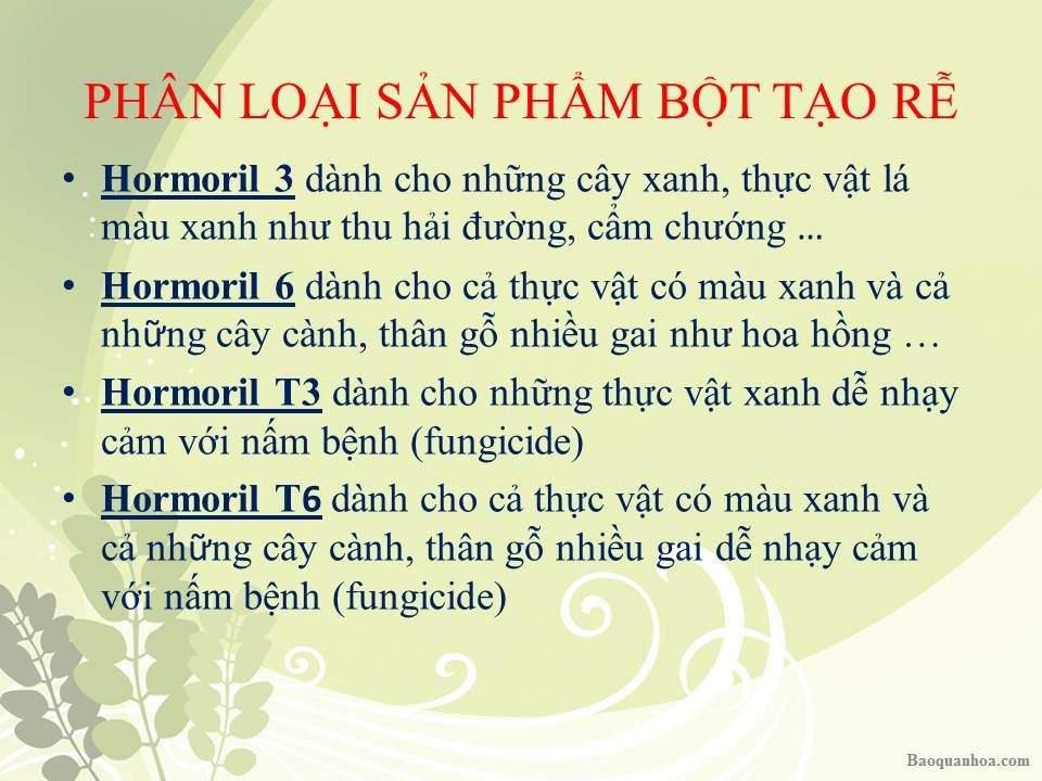 khang-ngoc-khanh-bot-tao-re 1