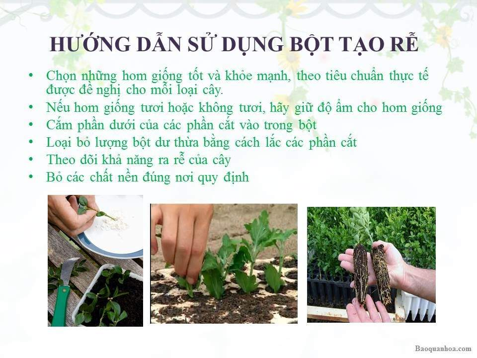 khang-ngoc-khanh-bot-tao-re 2