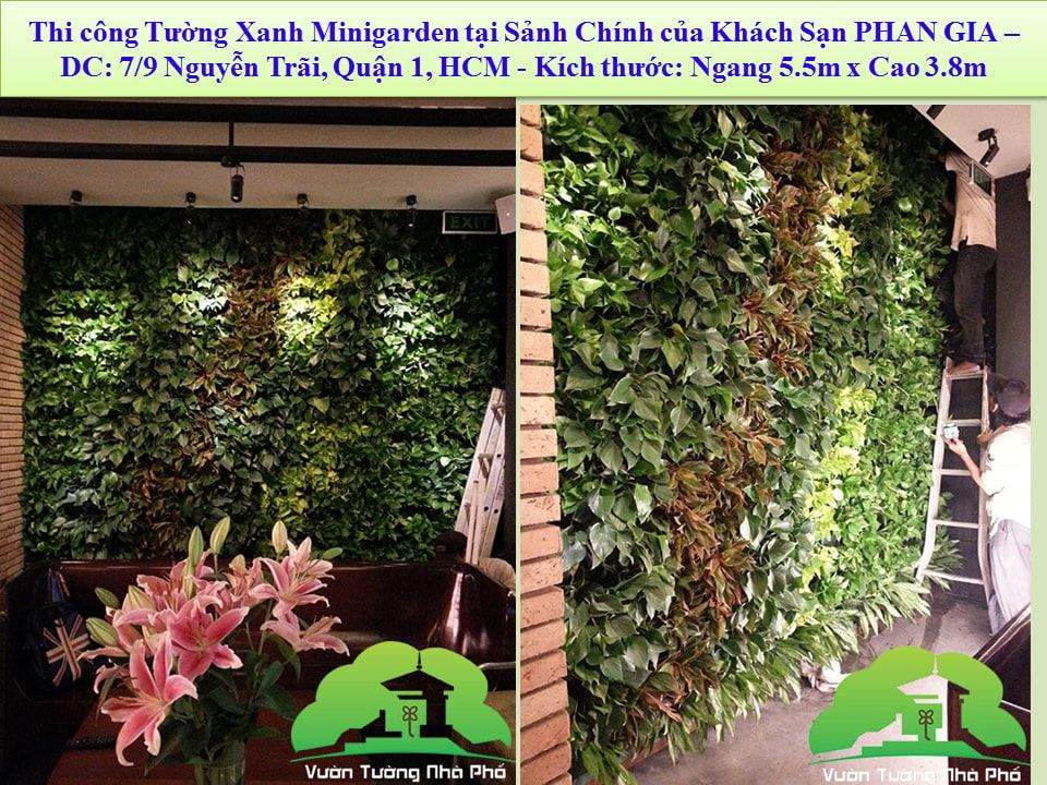 khang-Ngoc-Khanh-Minigarden 10
