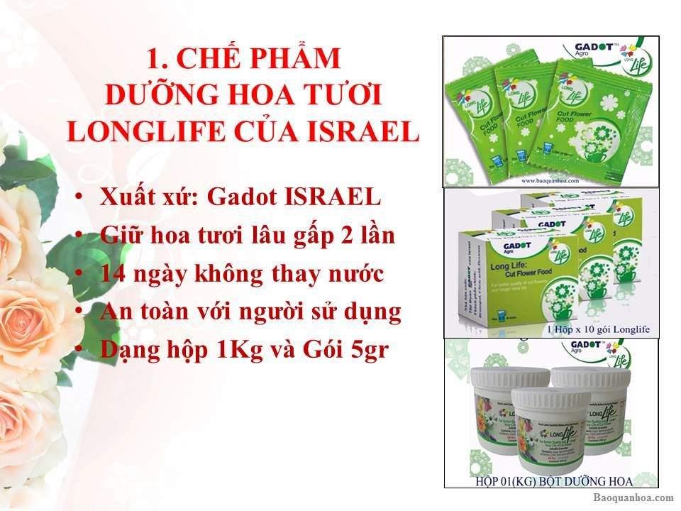khang-ngoc-khanh-goi-duong-hoa-longlife